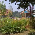 De Ulebelt | Natuur- en milieueducatie & kinderboerderij | De Ulebelt- parel van duurzaam Deventer