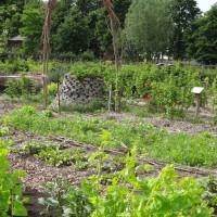 Permacultuurtuin - Bij ecologisch moestuinieren
