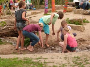 De Ulebelt | Natuur- en milieueducatie & kinderboerderij | Zomerprogramma Ulebelt