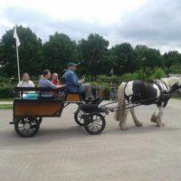 ponywagen