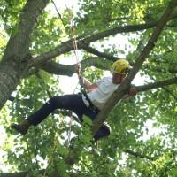 Een professionele boomverzorger tijdens de kampioenschappen